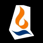 Max Financial Services Ltd