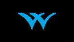 Welspun Corp Ltd