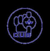 City Union Bank Ltd